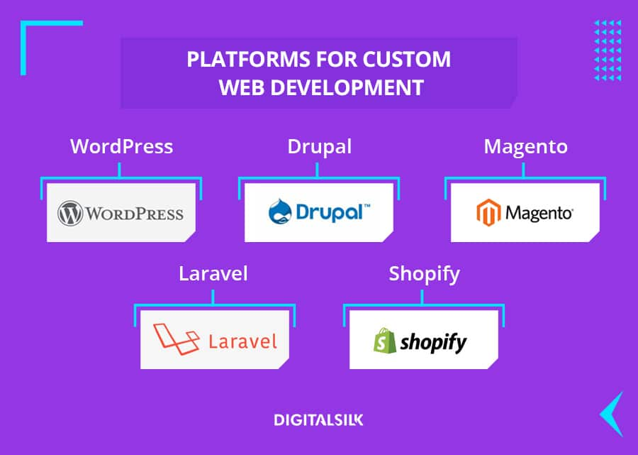 custom illustration to depict platforms used for custom web solutions